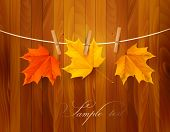 stock photo of fall decorations  - Autumn background with leaves - JPG
