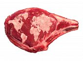 Global Meat Industry