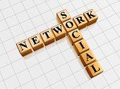 Social Network - Golden Crossword