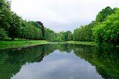 Silent Lake near green forest