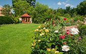stock photo of gazebo  - Beautiful garden with blooming roses and a small gazebo - JPG