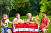 Happy Family On Picnic, Colorful Outdoors