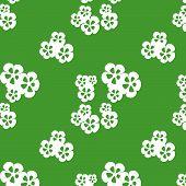 Flower_02_solid_white_on_fresh_green.