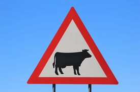 picture of errat  - A classical African road sign - JPG