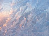 picture of crystal glass  - Frosty natural pattern and sunlight on winter glass - JPG