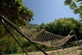 Hammock On The Lawn