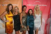 Real Housewives of D.C. at the NBC Summer Press Tour Party, Beverly Hilton Hotel, Beverly Hills, CA. 07-30-10