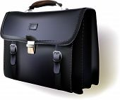 Business bag realistic vector