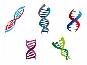 Colourful DNA strands