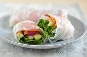 vietnamese spring rolls with Salmon
