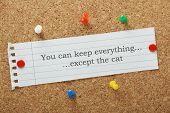 picture of divorce-papers  - You can keep everything except the cat typed on a paper note pinned to a cork notice board - JPG