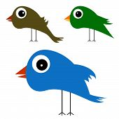 Cute And Funny Bird Vector Illustration