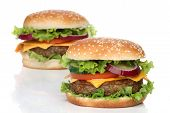 Two delicious hamburgers isolated