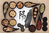 Chinese herbal medicine selection with acupuncture needles, yang symbol and good fortune coins. Scri