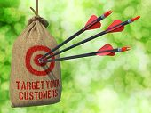 Target Your Customers -  Arrows Hit in Red Mark Target.