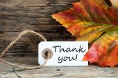 Autumnal Thank You Label