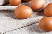 fresh brown eggs closeup on linen background