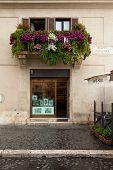 Nardecchia Store Rome