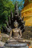 Beauty Buddha Sculpture