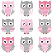 Cute Owl vector set - Illustration