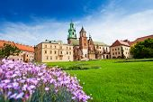 Beautiful view near Wawel Royal Castle