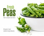 foto of green pea  - Fresh green peas with leaf and flower - JPG
