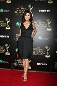 LOS ANGELES - JUN 22:  Finola Hughes at the 2014 Daytime Emmy Awards Arrivals at the Beverly Hilton