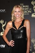 LOS ANGELES - JUN 22:  Brooke Burns at the 2014 Daytime Emmy Awards Arrivals at the Beverly Hilton H