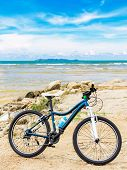 Bicycle At Beach