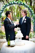 Two handsome gay grooms toast their marriage with champagne.