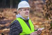 Forest Officer with tablet PC near piles of logs