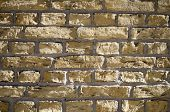 Light-colored Brick Wall