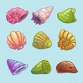 foto of scallop shell  - Set of cartoon shells - JPG