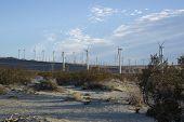 Windmill Turbines