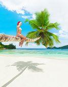 Cute Woman In Bikini And Christmas Hat On Palm Tree At Tropical Beach