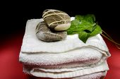 Towel, Stones And Ivy Leaves