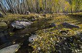 Inner Mongolia Kobayashi Autumn