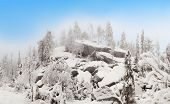 picture of laplander  - Cloud on the ruined rocks in winter forest on the slopes of the ski resort of Ruka - JPG