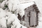 Snow-covered fir branch on a background of the hut.