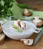 mushroom soup puree with fresh champignons and parsley