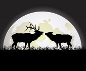 Deer Against The Moon