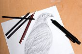 pic of clutch  - Clutch pencil with drawing hawk on the wooden background - JPG