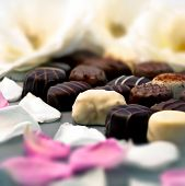 stock photo of truffle  - Chocolate truffles with white and pink rose petals - JPG