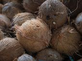 picture of hairy  - Textured background of stack of hairy brown coconuts in natural tropical light - JPG
