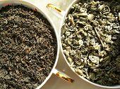 Tea - Black & Green