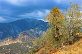 Постер, плакат: San Gabriel Mountains