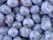 Blueberries-Horizontal