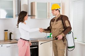 foto of pest control  - Happy Woman And Young Pest Control Worker Shaking Hands To Each Other In Kitchen Room - JPG