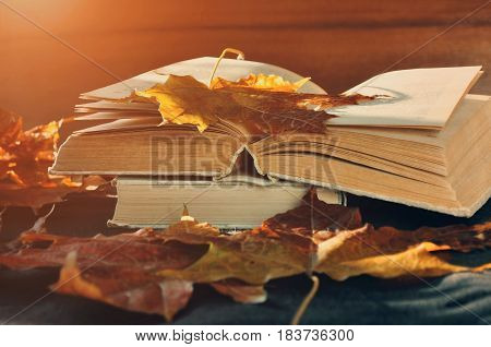 poster of Autumn concept. Autumn still life - worn books among the autumn leaves under bright sunlight. Autumn objects. Focus at the book's spine.Autumn retro still life with autumn leaves. Autumn still life