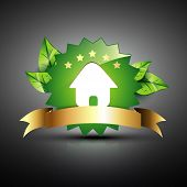 vector green house eco icon